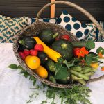 Workshop vegetarisch koken